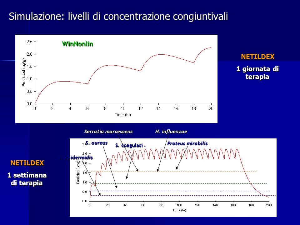 NETILDEX 1 giornata di terapia NETILDEX 1 settimana di terapia S. epidermidis S. aureus H. influenzae Proteus mirabilis Serratia marcescens S. coagula