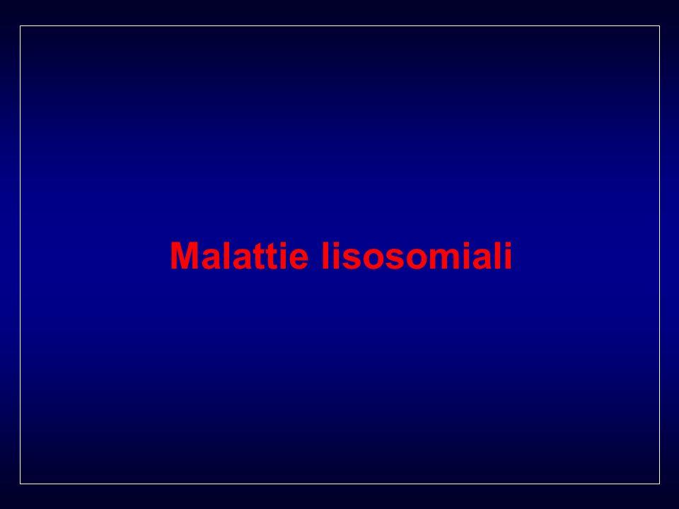 Malattie lisosomiali