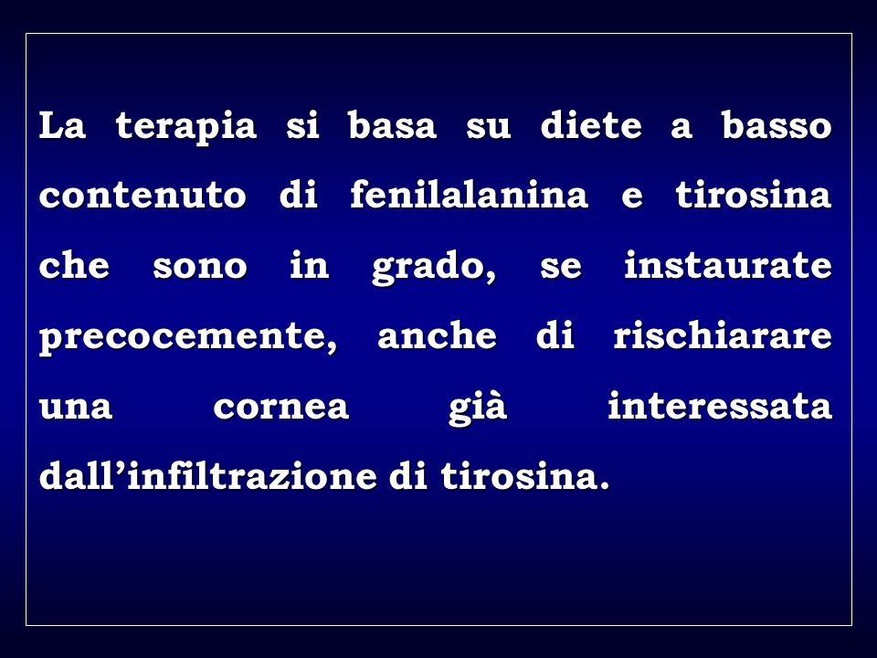 a aa a aa La terapia si basa su diete a basso contenuto di fenilalanina e tirosina che sono in grado, se instaurate precocemente, anche di rischiarare una cornea già interessata dallinfiltrazione di tirosina.