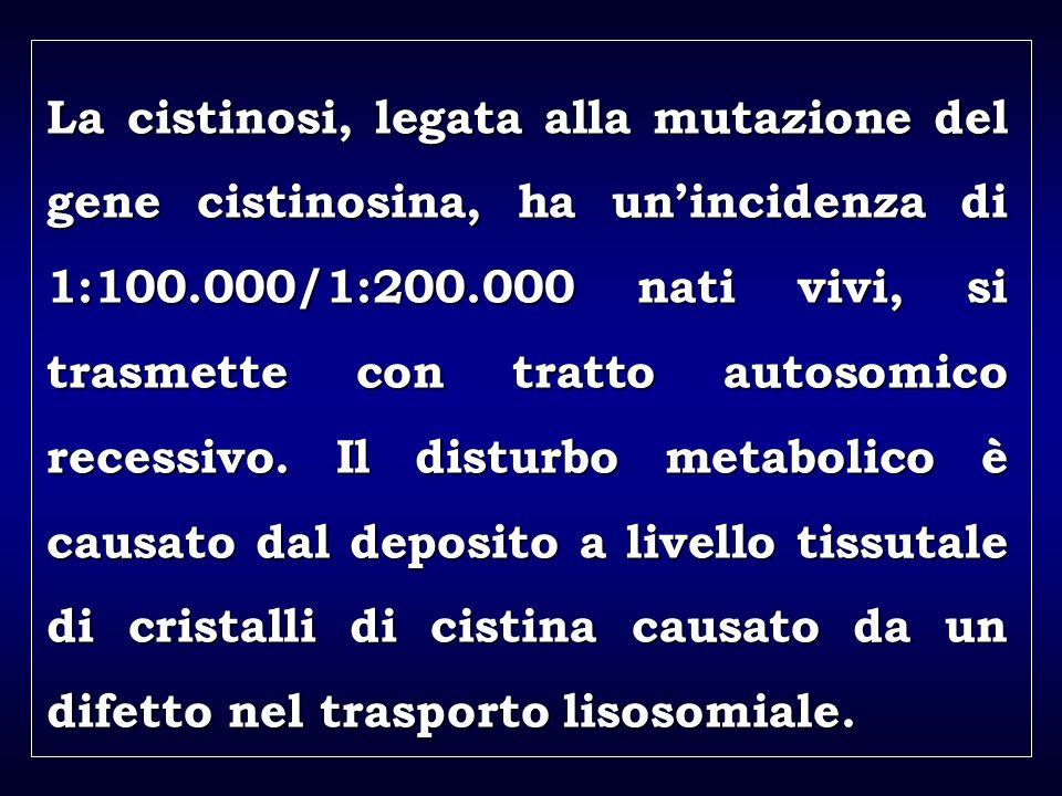 a aa a aa La cistinosi, legata alla mutazione del gene cistinosina, ha unincidenza di 1:100.000/1:200.000 nati vivi, si trasmette con tratto autosomico recessivo.