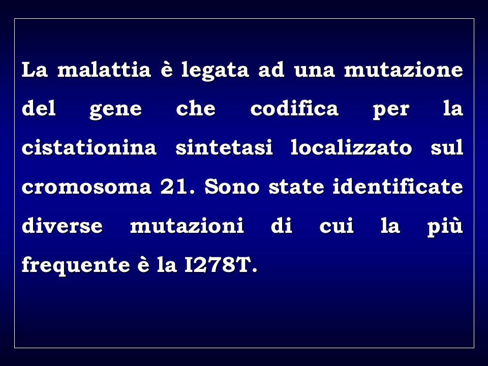 a aa a aa La malattia è legata ad una mutazione del gene che codifica per la cistationina sintetasi localizzato sul cromosoma 21.