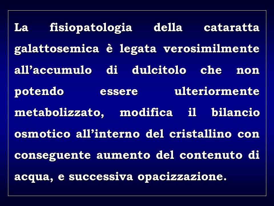 a aa a aa La fisiopatologia della cataratta galattosemica è legata verosimilmente allaccumulo di dulcitolo che non potendo essere ulteriormente metabo