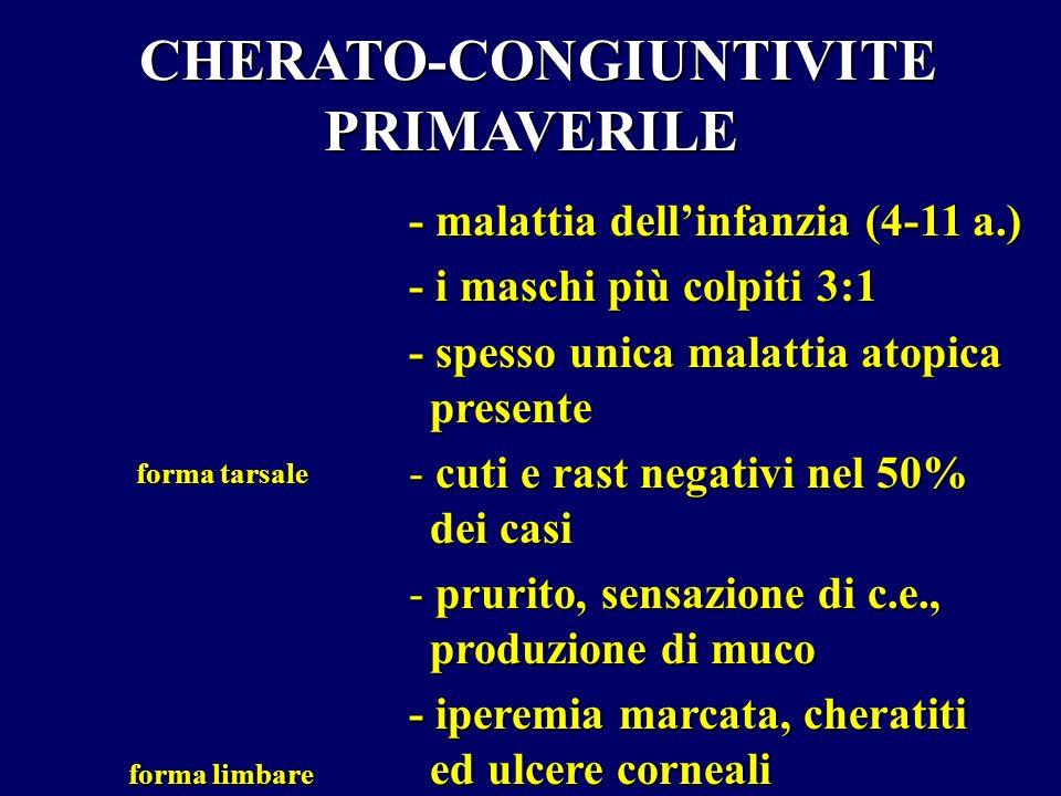 CHERATO-CONGIUNTIVITE PRIMAVERILE CHERATO-CONGIUNTIVITE PRIMAVERILE - malattia dellinfanzia (4-11 a.) - i maschi più colpiti 3:1 - spesso unica malatt