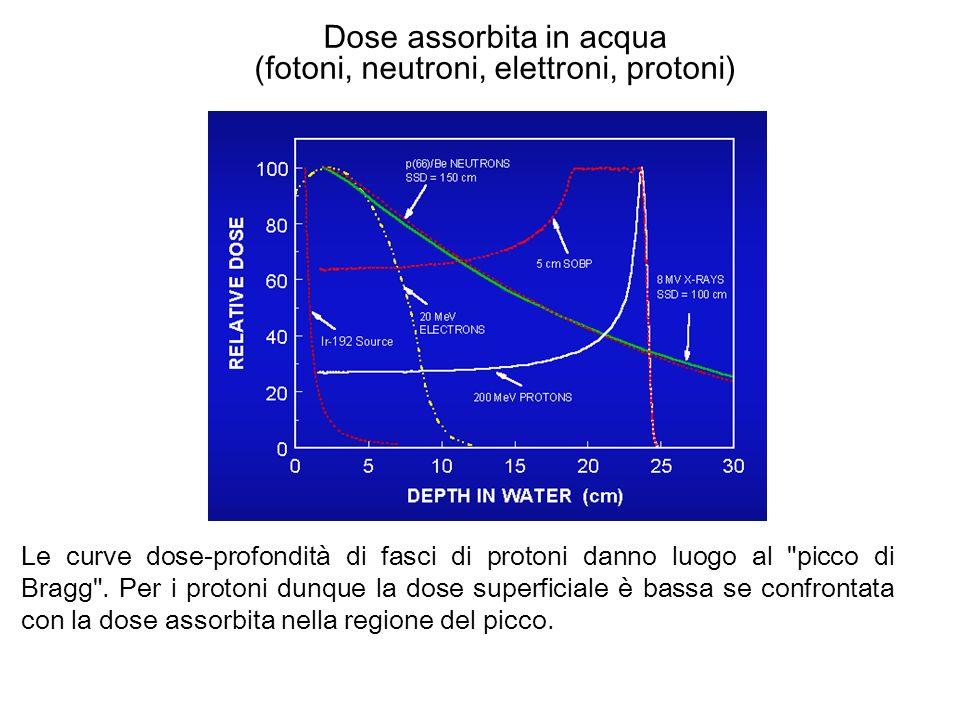 Dose assorbita in acqua (fotoni, neutroni, elettroni, protoni) Le curve dose-profondità di fasci di protoni danno luogo al