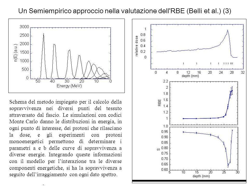 Un Semiempirico approccio nella valutazione dell'RBE (Belli et al.) (3) Schema del metodo impiegato per il calcolo della sopravvivenza nei diversi pun