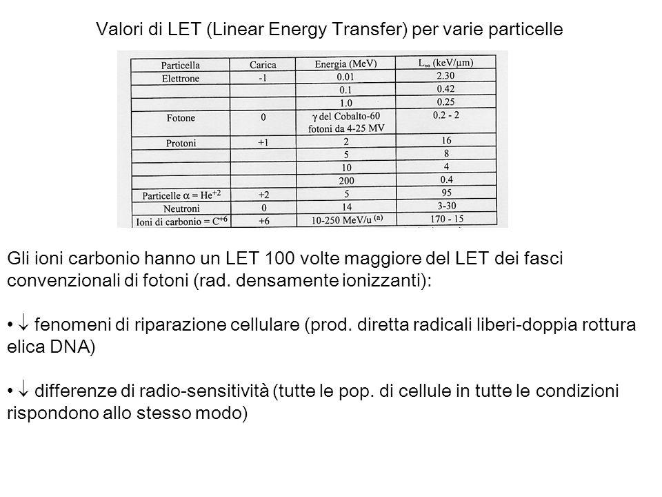 Valori di LET (Linear Energy Transfer) per varie particelle Gli ioni carbonio hanno un LET 100 volte maggiore del LET dei fasci convenzionali di foton
