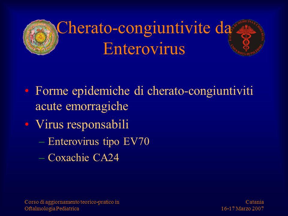 Catania 16-17 Marzo 2007 Corso di aggiornamento teorico-pratico in Oftalmologia Pediatrica Cherato-congiuntivite da Enterovirus Forme epidemiche di ch