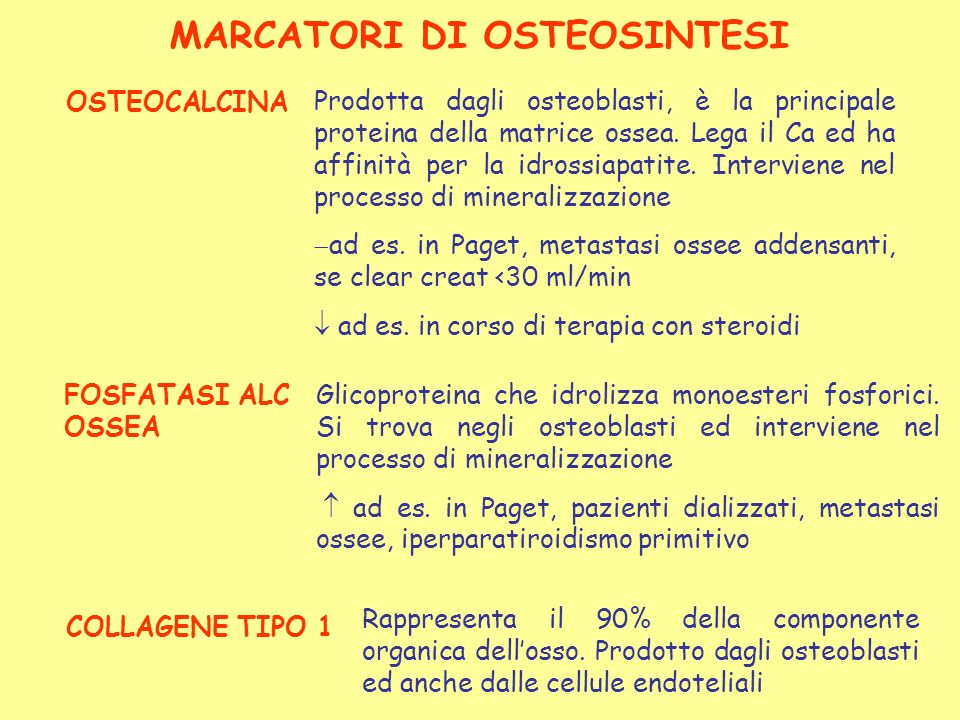 OSTEOCALCINA Prodotta dagli osteoblasti, è la principale proteina della matrice ossea. Lega il Ca ed ha affinità per la idrossiapatite. Interviene nel