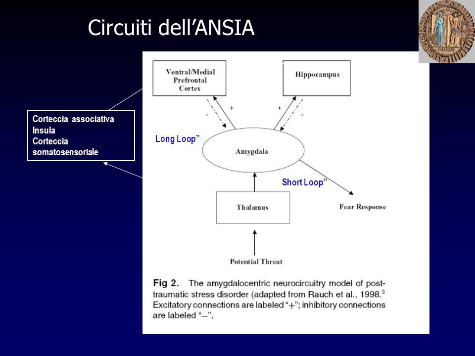 Circuiti dellANSIA Corteccia associativa Insula Corteccia somatosensoriale Short Loop Long Loop