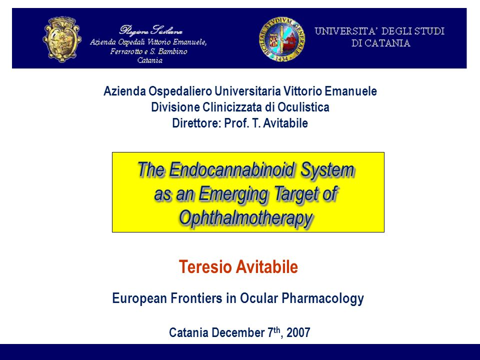 Teresio Avitabile European Frontiers in Ocular Pharmacology Catania December 7 th, 2007 Azienda Ospedaliero Universitaria Vittorio Emanuele Divisione