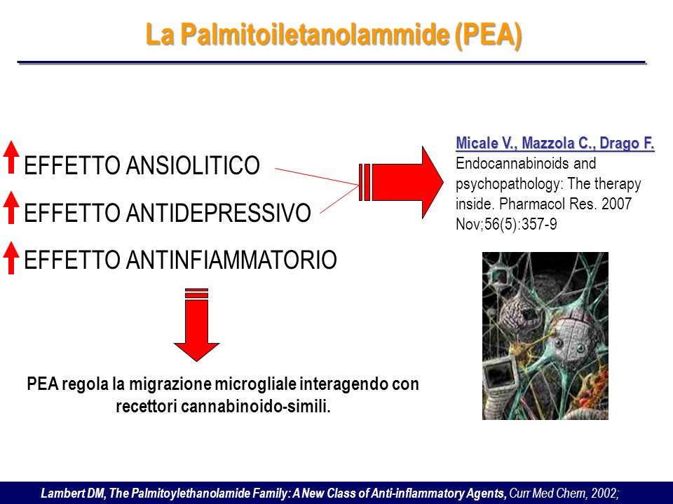 Lambert DM, The Palmitoylethanolamide Family: A New Class of Anti-inflammatory Agents, Curr Med Chem, 2002; La Palmitoiletanolammide (PEA) EFFETTO ANS