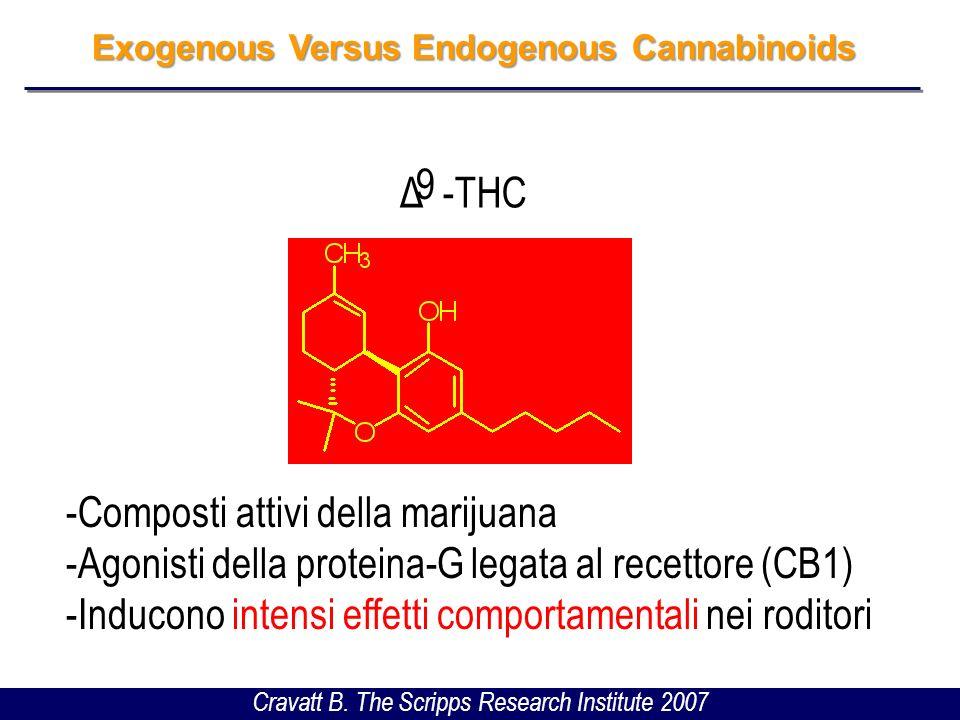 Exogenous Versus Endogenous Cannabinoids Palmitoiletanolammide (PEA) Prodotti in risposta ad una varietà di stimoli neuronali (elettrici, chimici, ecc.) Inducono effetti comportamentali brevi e transitori nei roditori Cravatt B.