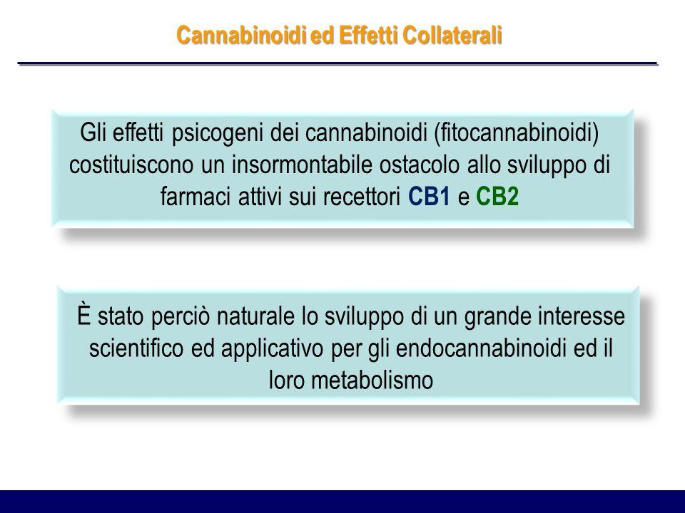 I Cannabinoidi La scoperta dei recettori per i cannabinoidi e dei loro ligandi lipidici endogeni (endocannabinoidi) ha fatto ipotizzare un enorme ed eccitante numero di applicazioni terapeutiche che potrebbero derivare dalla modulazione dellattività del Sistema Endocannabinoide: malattie del metabolismo dolore e infiammazione malattie del sistema nervoso centrale (schizofrenia, sclerosi multipla, ansietà, depressione) malattie cardiovascolari e respiratorie malattie oculari (glaucoma, degenerazioni retiniche, neuriti….) cancro malattie gastrointestinali ed epatiche malattie muscoloscheletriche e del sistema riproduttivo Pacher P, The Endocannabinoid System as an Emerging Target of Pharmacotherapy, Pharmacol Rev, 2006
