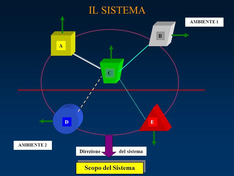 Direzione del sistema IL SISTEMA C A B ED AMBIENTE 2 AMBIENTE 1 Scopo del Sistema