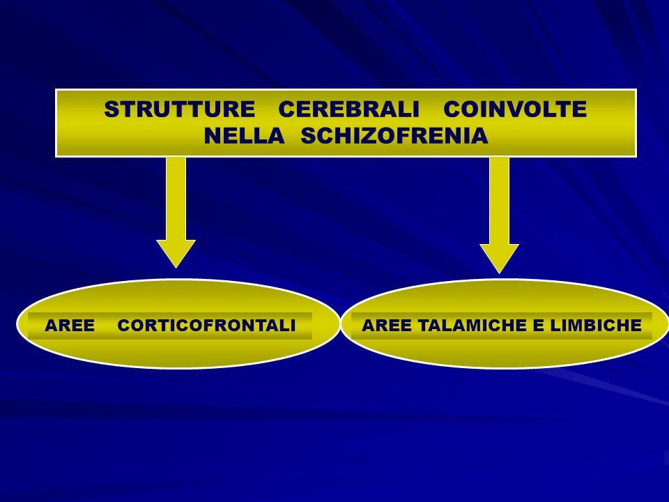 STRUTTURE CEREBRALI COINVOLTE NELLA SCHIZOFRENIA AREE CORTICOFRONTALIAREE TALAMICHE E LIMBICHE
