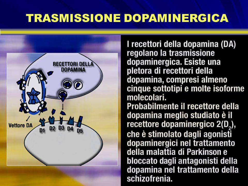 Sintomi positivi (delirio,allucinazi oni) Del pensiero, degli affetti e del comportamento Sintomi negativi, le quattro A: anaffettività, alogia, asocialità, abulia Ansia e Depressione IPOTESI PATOGENETICA DELLE DIMENSIONI SCHIZOFRENICHE IPERATTIVITA LIMBICA SOTTOCORTICALE DISFUNZIONE TALAMICA IPOFRONTALITà