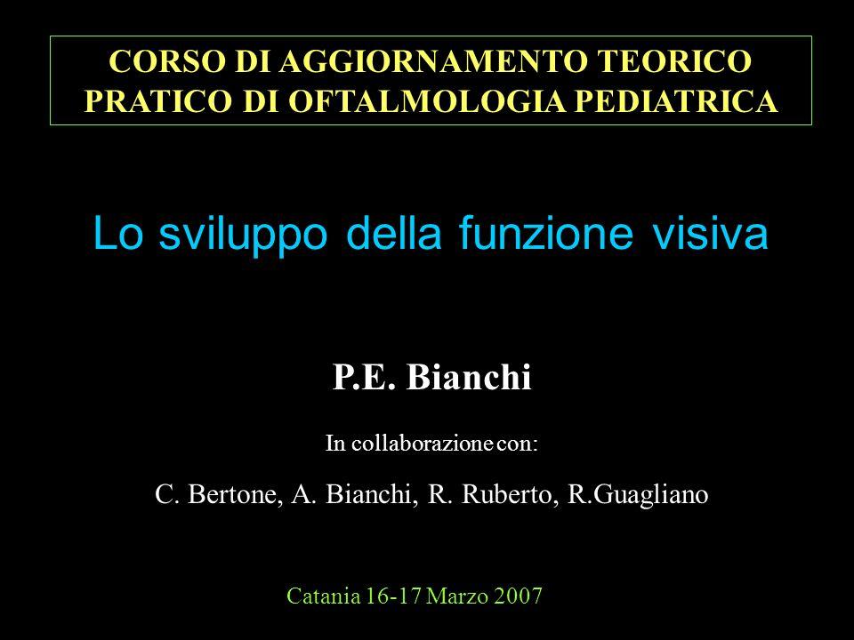 Lo sviluppo della funzione visiva Catania 16-17 Marzo 2007 P.E. Bianchi In collaborazione con: C. Bertone, A. Bianchi, R. Ruberto, R.Guagliano CORSO D