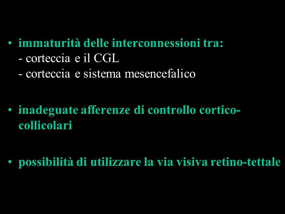 immaturità delle interconnessioni tra: - corteccia e il CGL - corteccia e sistema mesencefalico inadeguate afferenze di controllo cortico- collicolari
