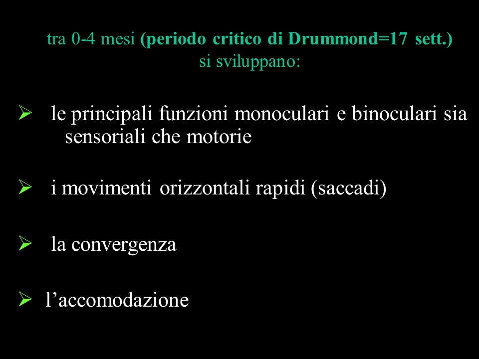 le principali funzioni monoculari e binoculari sia sensoriali che motorie i movimenti orizzontali rapidi (saccadi) la convergenza laccomodazione tra 0