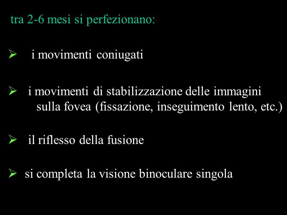 i movimenti coniugati i movimenti di stabilizzazione delle immagini sulla fovea (fissazione, inseguimento lento, etc.) il riflesso della fusione si co