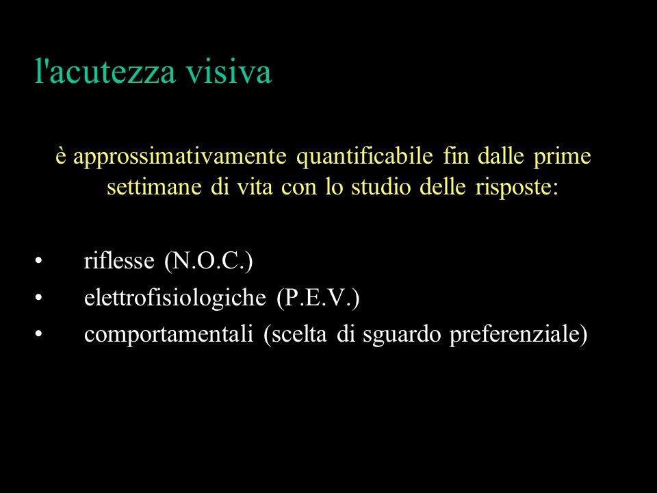 l'acutezza visiva è approssimativamente quantificabile fin dalle prime settimane di vita con lo studio delle risposte: riflesse (N.O.C.) elettrofisiol