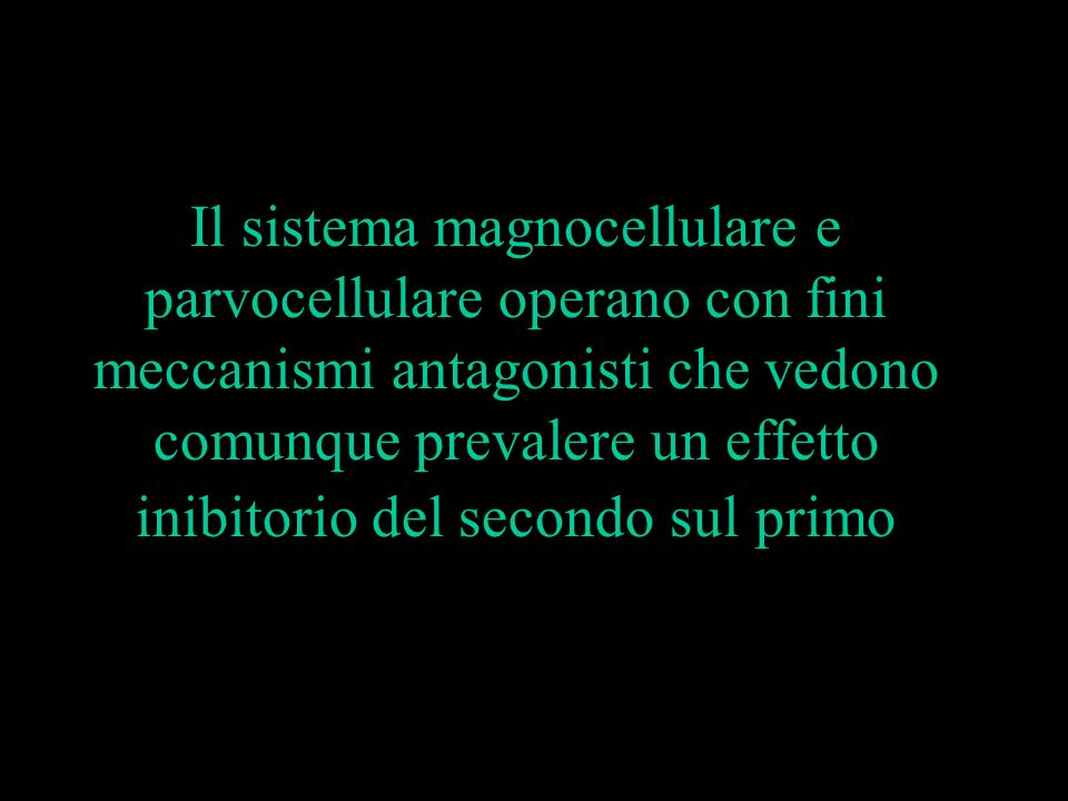Il sistema magnocellulare e parvocellulare operano con fini meccanismi antagonisti che vedono comunque prevalere un effetto inibitorio del secondo sul