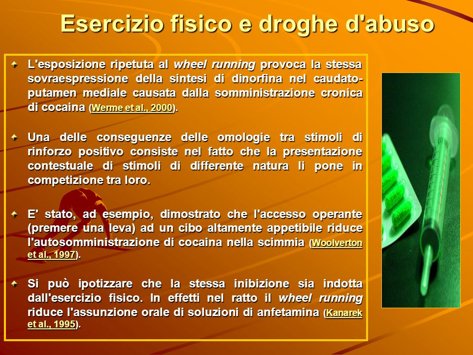 Esercizio fisico e droghe d'abuso L'esposizione ripetuta al wheel running provoca la stessa sovraespressione della sintesi di dinorfina nel caudato- p