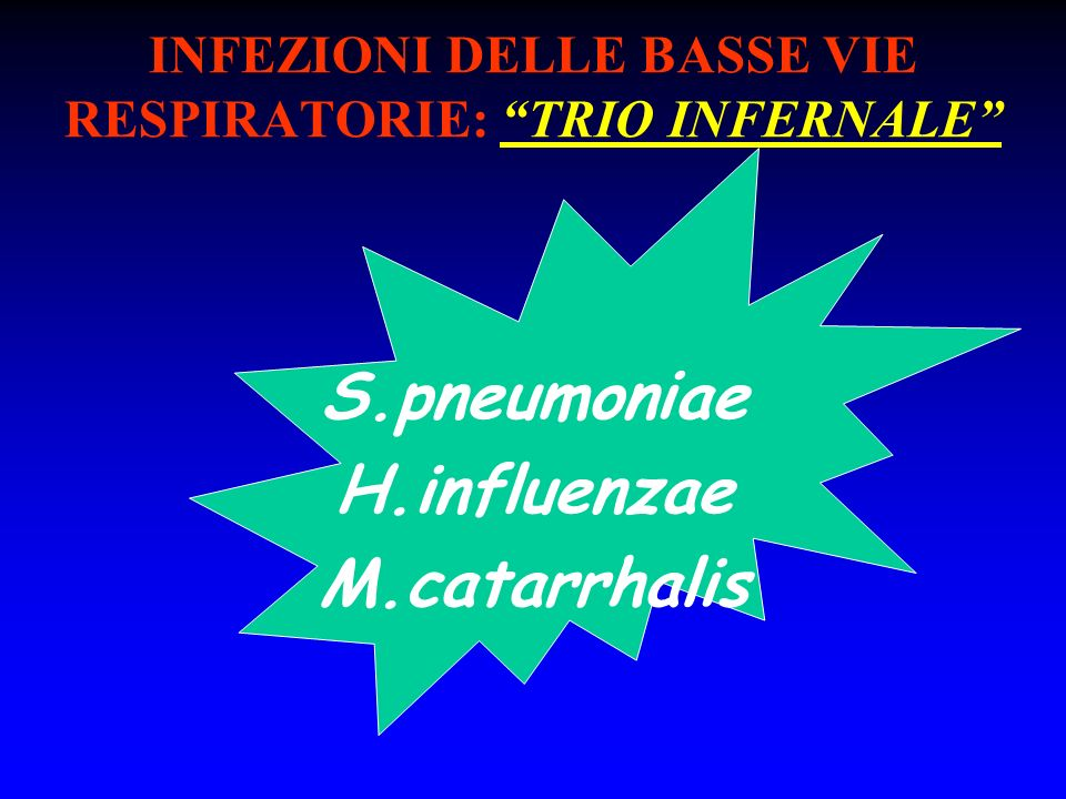 INFEZIONI DELLE BASSE VIE RESPIRATORIE: TRIO INFERNALE S.pneumoniae H.influenzae M.catarrhalis