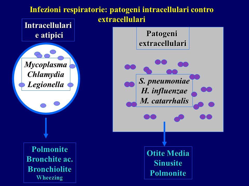 Mycoplasma Chlamydia Legionella Intracellulari e atipici e atipici Polmonite Bronchite ac. BronchioliteWheezing S. pneumoniae H. influenzae M. catarrh