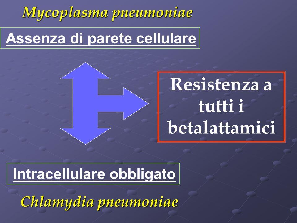 Assenza di parete cellulare Mycoplasma pneumoniae Resistenza a tutti i betalattamici Chlamydia pneumoniae Intracellulare obbligato