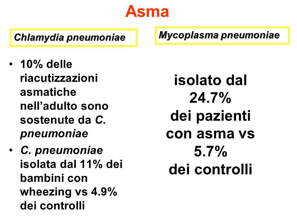 Asma 10% delle riacutizzazioni asmatiche nelladulto sono sostenute da C. pneumoniae C. pneumoniae isolata dal 11% dei bambini con wheezing vs 4.9% dei