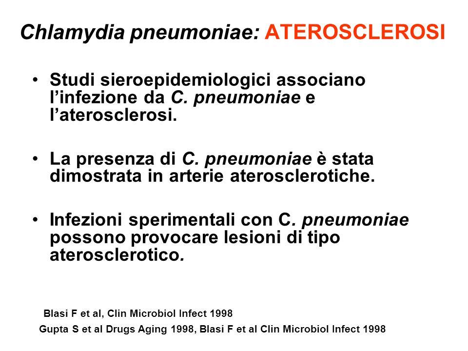 Chlamydia pneumoniae: ATEROSCLEROSI Studi sieroepidemiologici associano linfezione da C. pneumoniae e laterosclerosi. La presenza di C. pneumoniae è s