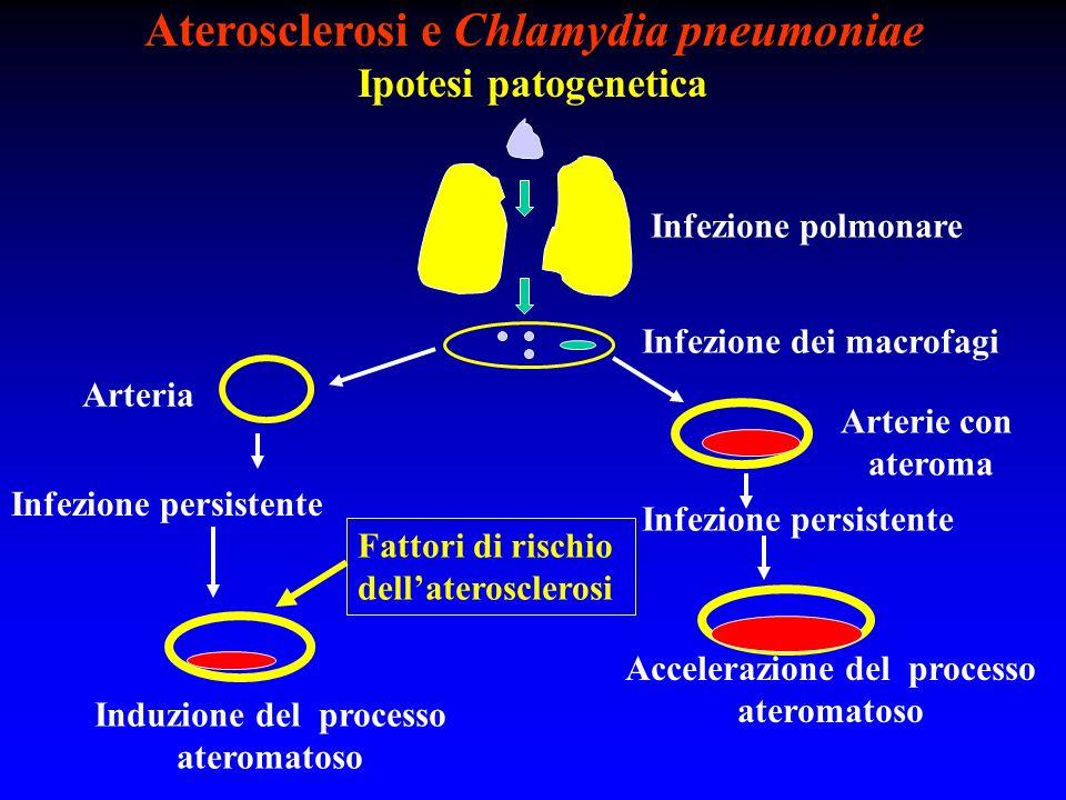 Aterosclerosi e Chlamydia pneumoniae Ipotesi patogenetica Infezione polmonare Infezione dei macrofagi Arteria Arterie con ateroma Fattori di rischio d