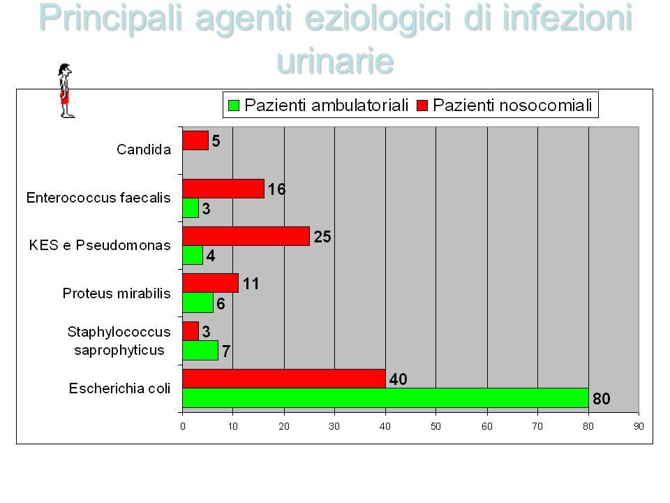 Principali agenti eziologici di infezioni urinarie