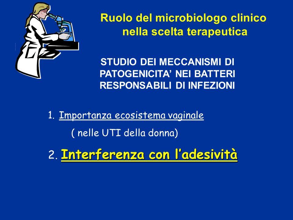 Ruolo del microbiologo clinico nella scelta terapeutica STUDIO DEI MECCANISMI DI PATOGENICITA NEI BATTERI RESPONSABILI DI INFEZIONI 1.Importanza ecosi