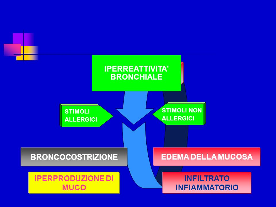 1975198019851990199219952000 BRONCHOSPASM INFLAMMATION REMODELLING Bronchial asthma: evolution of therapy Corticosteroidi inalatori -short Greening Pauwels Shapiro +CS