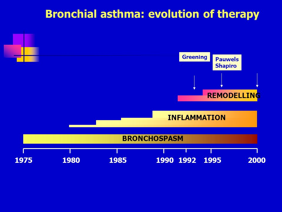 1975198019851990199219952000 BRONCHOSPASM INFLAMMATION REMODELLING Bronchial asthma: evolution of therapy Corticosteroidi inalatori -short Greening Pa