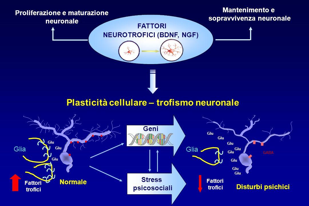 Plasticità cellulare – trofismo neuronale Glia Glu Disturbi psichici Fattori trofici Glu GABA Glia Glu Normale Fattori trofici Geni Stress psicosociali Mantenimento e sopravvivenza neuronale Proliferazione e maturazione neuronale FATTORI NEUROTROFICI (BDNF, NGF)