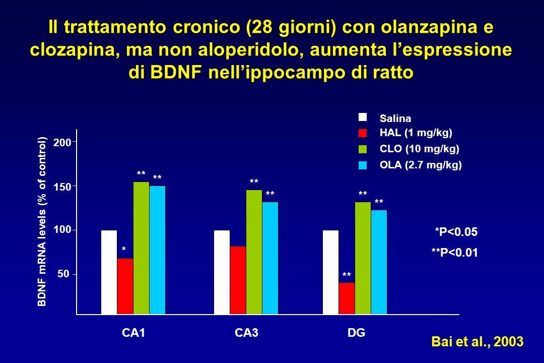 Il trattamento cronico (28 giorni) con olanzapina e clozapina, ma non aloperidolo, aumenta lespressione di BDNF nellippocampo di ratto Salina HAL (1 mg/kg) CLO (10 mg/kg) OLA (2.7 mg/kg) Bai et al., 2003 CA1CA3DG BDNF mRNA levels (% of control) 50 100 150 200 * ** *P<0.05 **P<0.01