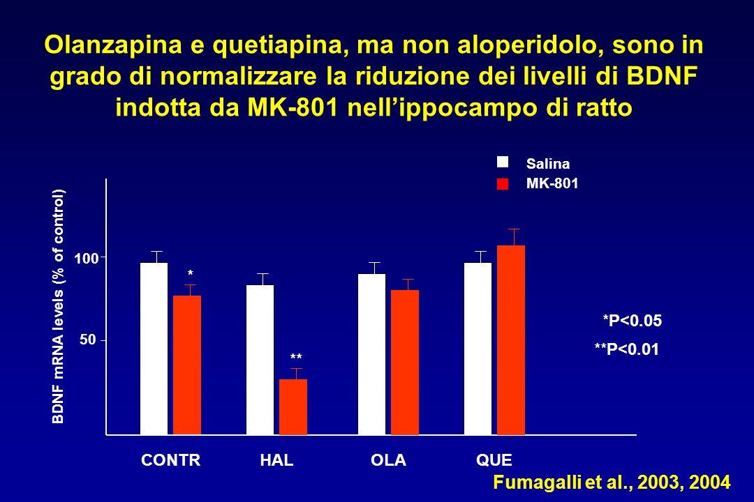 Salina MK-801 Fumagalli et al., 2003, 2004 CONTR BDNF mRNA levels (% of control) 50 100 * ** *P<0.05 **P<0.01 Olanzapina e quetiapina, ma non aloperidolo, sono in grado di normalizzare la riduzione dei livelli di BDNF indotta da MK-801 nellippocampo di ratto HALOLAQUE