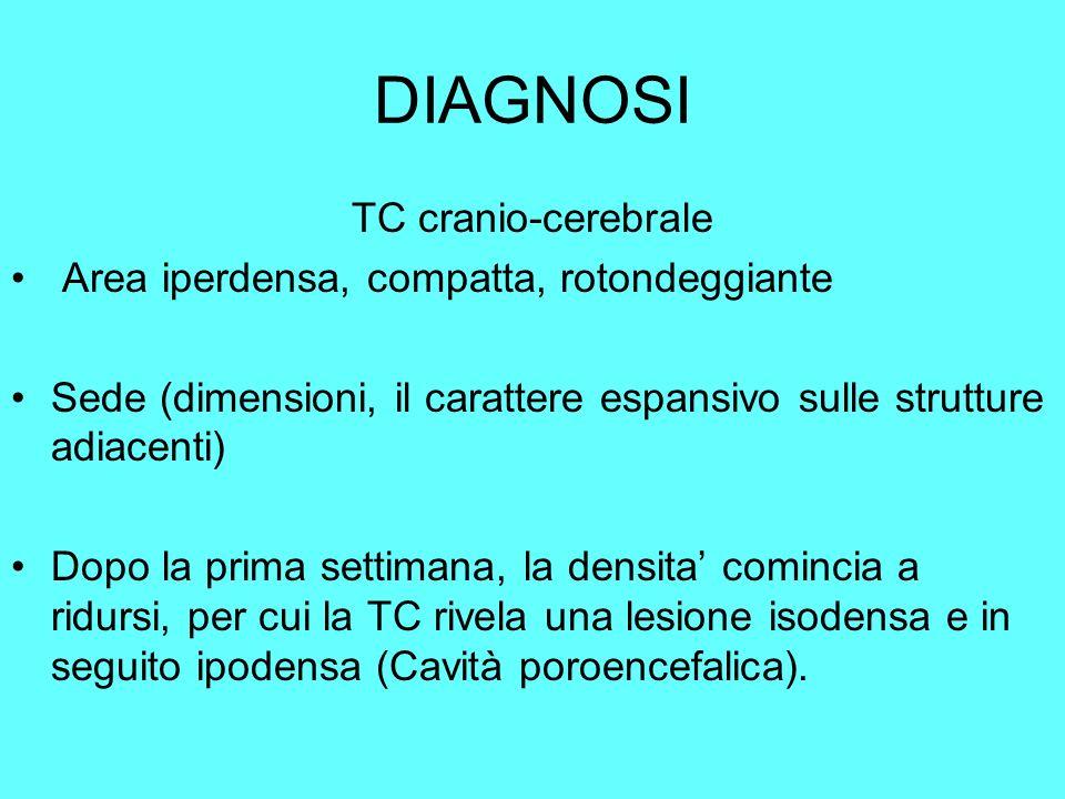 DIAGNOSI TC cranio-cerebrale Area iperdensa, compatta, rotondeggiante Sede (dimensioni, il carattere espansivo sulle strutture adiacenti) Dopo la prim