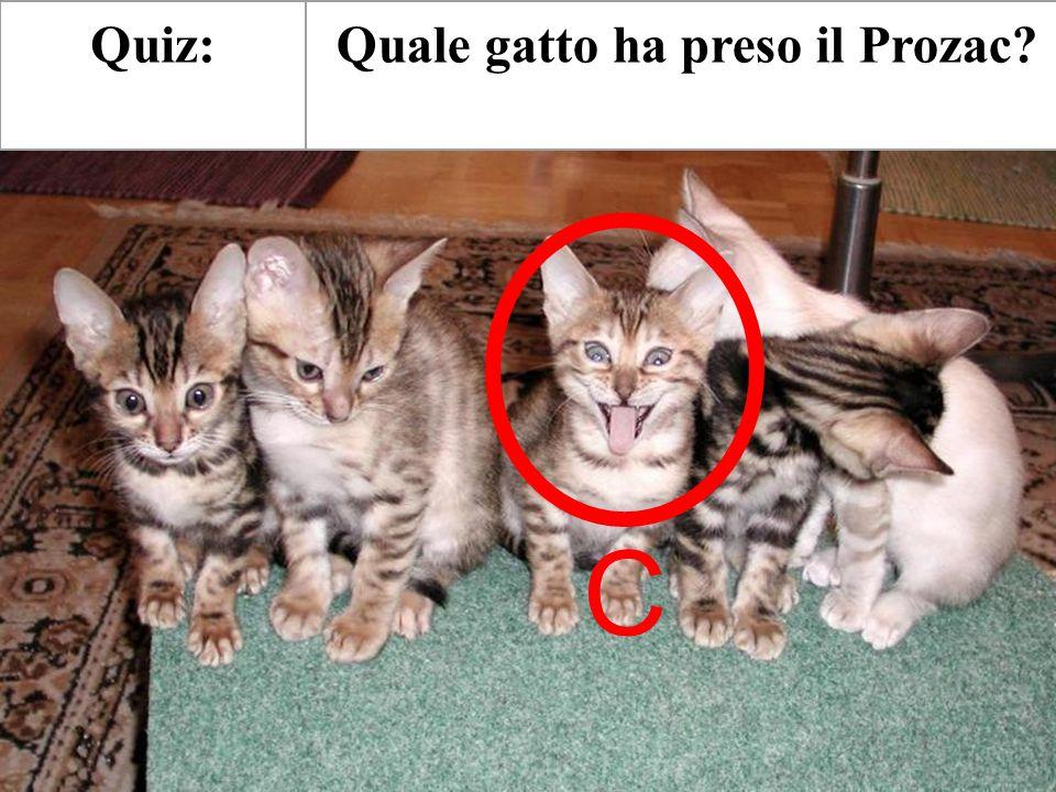 Quale gatto ha preso il Prozac?Quiz: C