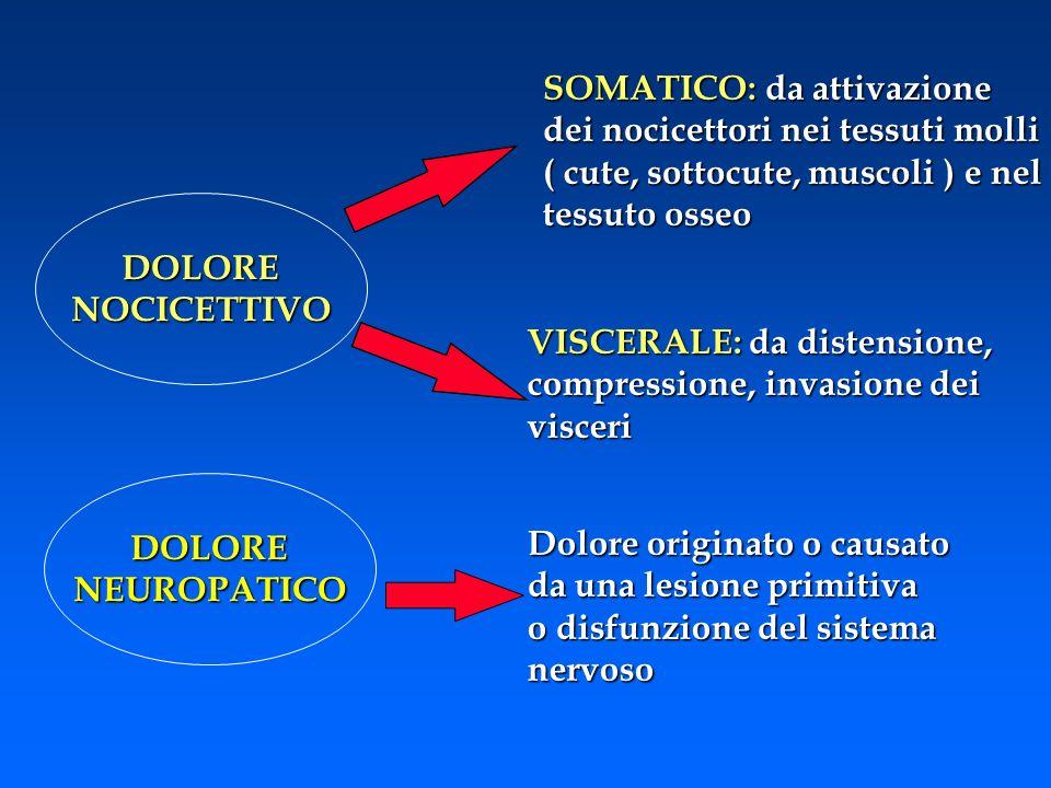 DOLORENOCICETTIVO SOMATICO: da attivazione dei nocicettori nei tessuti molli ( cute, sottocute, muscoli ) e nel tessuto osseo VISCERALE: da distension