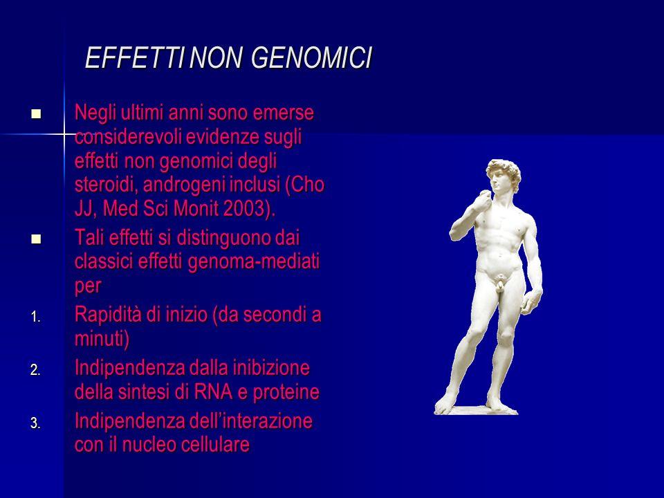 EFFETTI NON GENOMICI Negli ultimi anni sono emerse considerevoli evidenze sugli effetti non genomici degli steroidi, androgeni inclusi (Cho JJ, Med Sci Monit 2003).
