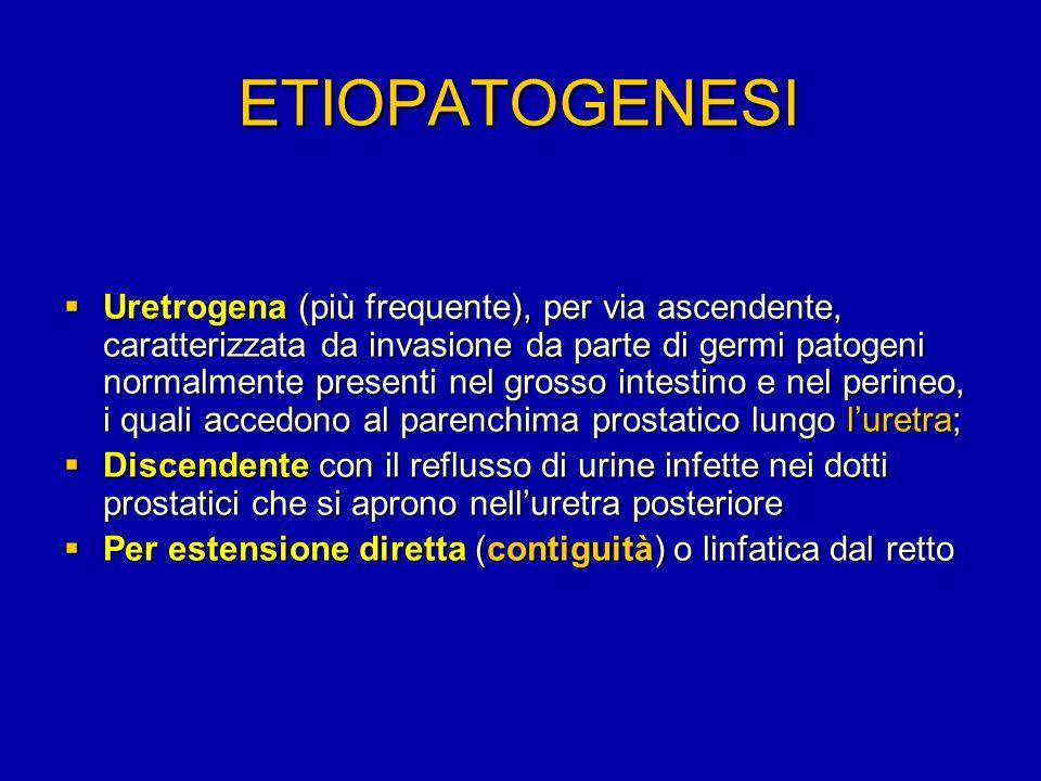 ETIOPATOGENESI Uretrogena (più frequente), per via ascendente, caratterizzata da invasione da parte di germi patogeni normalmente presenti nel grosso