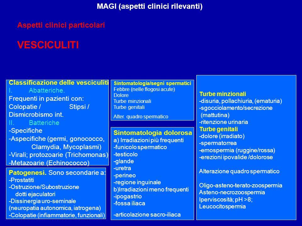 MAGI (aspetti clinici rilevanti) Classificazione delle vesciculiti I.Abatteriche. Frequenti in pazienti con: Colopatie / Stipsi / Dismicrobismo int. I