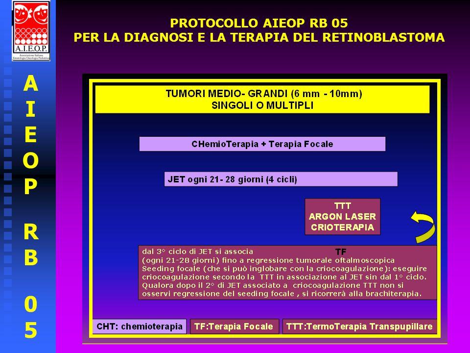 AIEOPRB05AIEOPRB05