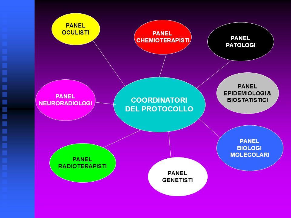 PROGETTI & STUDI PREVISTI ASPETTI FUNDUSCOPICI& CLASSIFICATIVI LINK RIR & REMOTE DATA ENTRY SYSTEM STUDIO ESAMI PER IMMAGINI CENTRALIZZATI BANCA MATERIALE BIOLOGICO PANEL RADIOTERAPISTI STUDI IN VITRO FARMACI DEMETILANTI STUDIO MOLECOLARE MUTAZIONI RB1/Rb2/p130 CONSIGLIO GENETICO