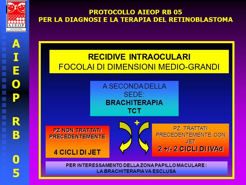 AIEOPRB05AIEOPRB05 PROTOCOLLO AIEOP RB 05 PER LA DIAGNOSI E LA TERAPIA DEL RETINOBLASTOMA RECIDIVE INTRAOCULARI FOCOLAI DI GRANDI DIMENSIONI PZ NON TRATTATI PRECEDENTEMENTE 6 CICLI DI JET PZ TRATTATI PRECEDENTEMENTE CON JET 2 +/- 2 CICLI IVAd CONSIDERARE LA POSSIBILITA DI TERAPIA STEREOTASSICA