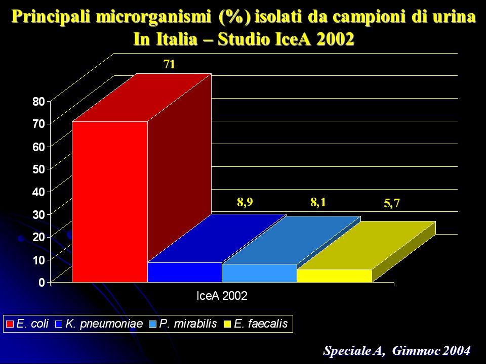 Principali microrganismi (%) isolati da campioni di urina In Italia – Studio IceA 2002 Speciale A, Gimmoc 2004 Speciale A, Gimmoc 2004